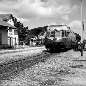 Gare de Tindja / Tunisie, 1947