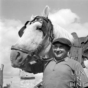 Le paysan et son cheval / Dans le Berry à Valençay, 1941