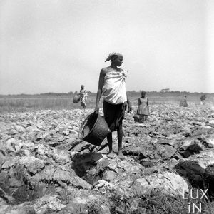 Sénégal / 1947